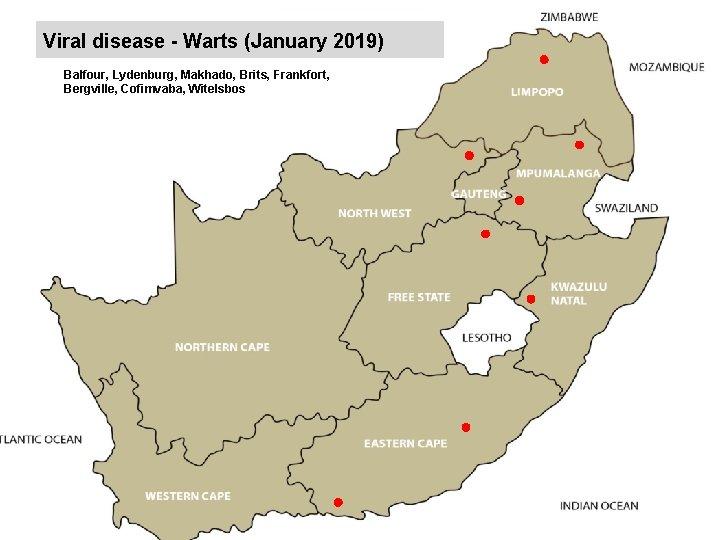 Viral disease - Warts (January 2019) kjkjnmn Balfour, Lydenburg, Makhado, Brits, Frankfort, Bergville, Cofimvaba,