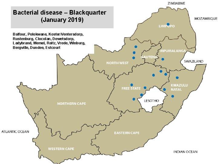 Bacterial disease – Blackquarter (January 2019) kjkjnmn Balfour, Polokwane, Koster/Ventersdorp, Rustenburg, Clocolan, Dewetsdorp, Ladybrand,