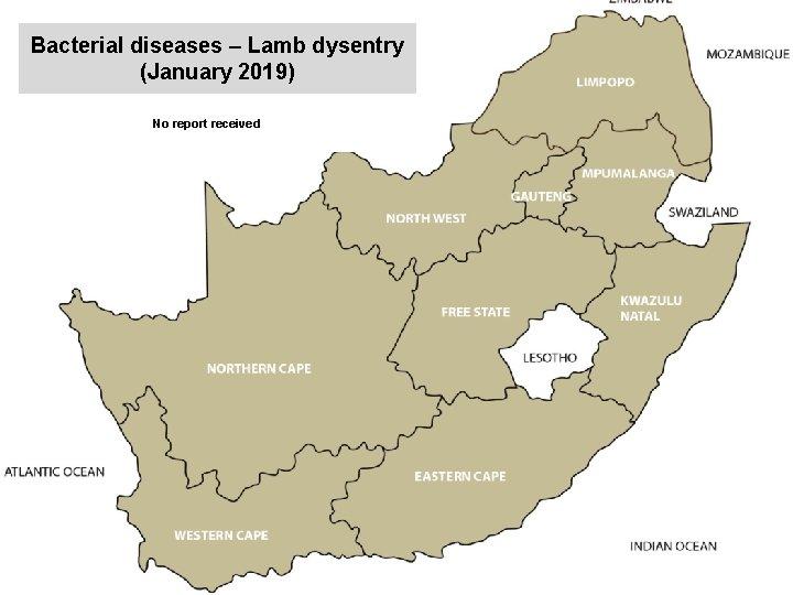 Bacterial diseases – Lamb dysentry (January 2019) kjkjnmn No report received