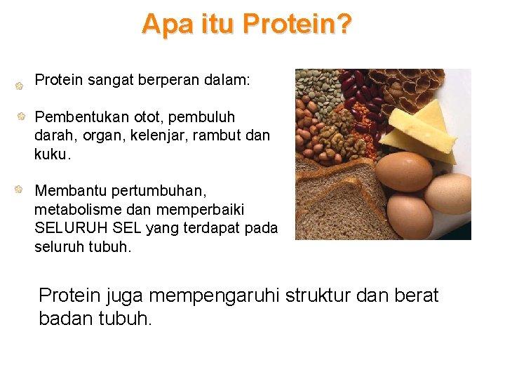 Apa itu Protein? Protein sangat berperan dalam: Pembentukan otot, pembuluh darah, organ, kelenjar, rambut