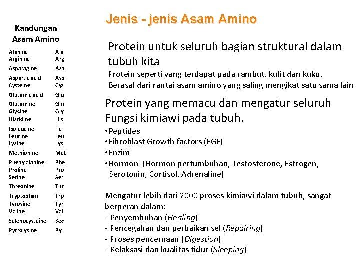 Kandungan Asam Amino Alanine Arginine Ala Arg Asparagine Asn Aspartic acid Cysteine Asp Cys