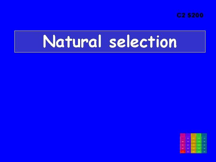 C 2 $200 Natural selection