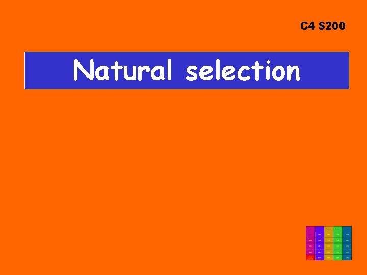 C 4 $200 Natural selection