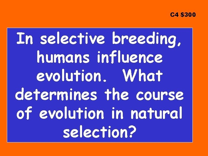 C 4 $300 In selective breeding, humans influence evolution. What determines the course of