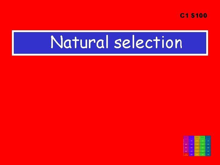 C 1 $100 Natural selection