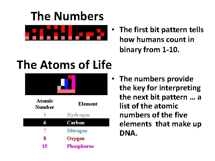 The Numbers • The first bit pattern tells how humans count in binary from