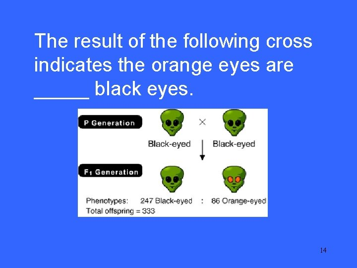 IIThe 10 result of the following cross indicates the orange eyes are _____ black