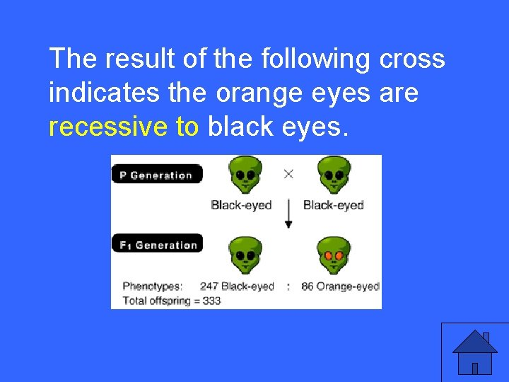 IIThe 10 aresult of the following cross indicates the orange eyes are recessive to
