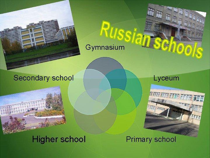 Gymnasium Secondary school Higher school Lyceum Primary school