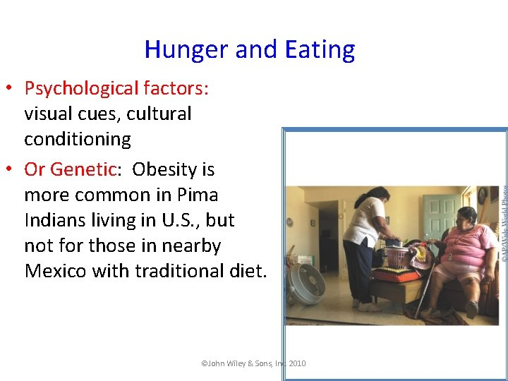 Hunger and Eating • Psychological factors: visual cues, cultural conditioning • Or Genetic: Obesity
