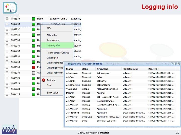 Logging info DIRAC Monitoring Tutorial 20