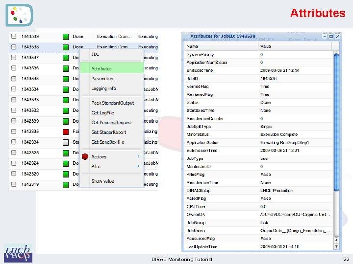 Attributes DIRAC Monitoring Tutorial 22