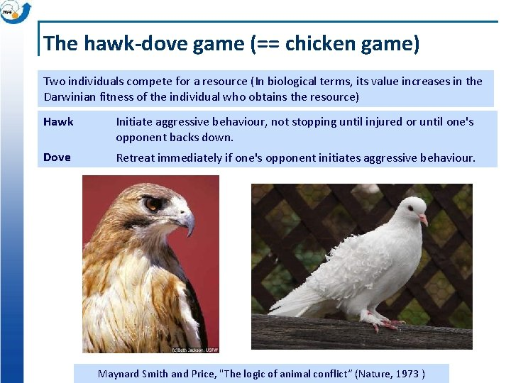The hawk-dove game (== chicken game) Two individuals compete for a resource (In biological
