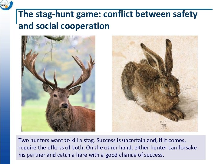 The stag-hunt game: conflict between safety and social cooperation Two hunters want to kill