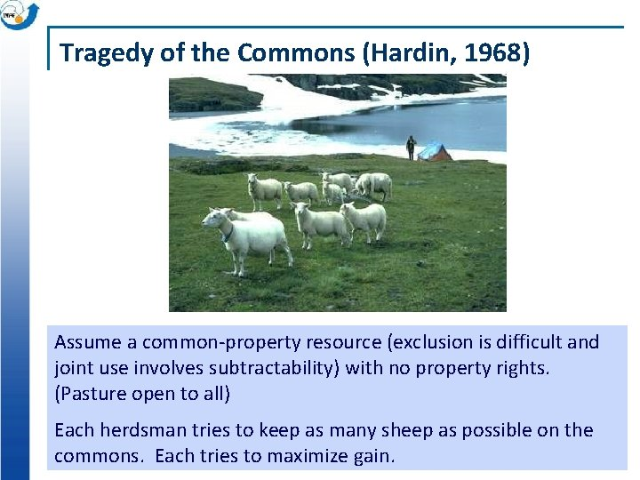 Tragedy of the Commons (Hardin, 1968) Assume a common-property resource (exclusion is difficult and