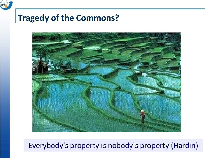 Tragedy of the Commons? Everybody's property is nobody's property (Hardin)