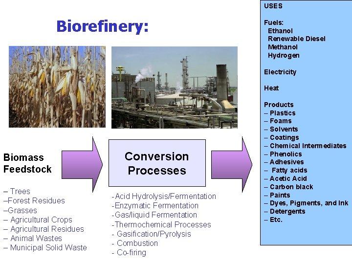 USES Biorefinery: Fuels: Ethanol Renewable Diesel Methanol Hydrogen Electricity Heat Biomass Feedstock – Trees