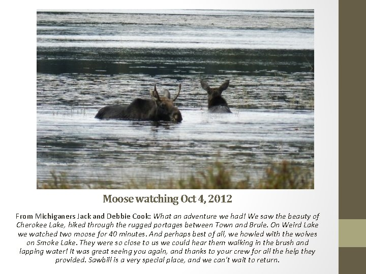 Moose watching Oct 4, 2012 From Michiganers Jack and Debbie Cook: What an adventure
