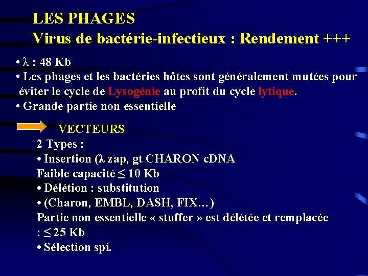 LES PHAGES Virus de bactérie-infectieux : Rendement +++ • λ : 48 Kb •