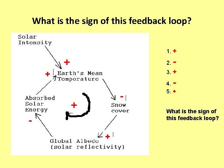 What is the sign of this feedback loop? 1. + + 2. - 3.