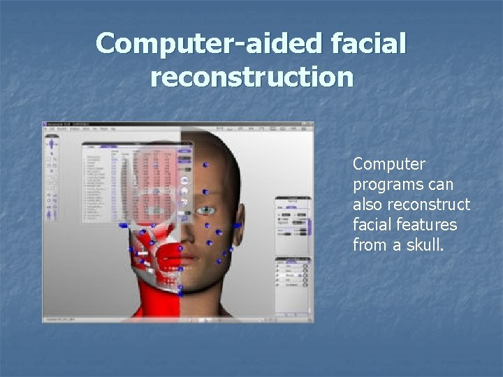 Computer-aided facial reconstruction Computer programs can also reconstruct facial features from a skull.