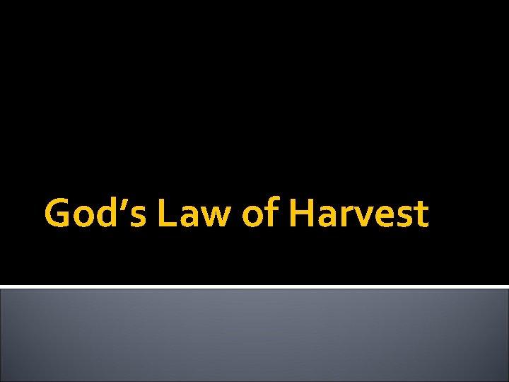 God's Law of Harvest