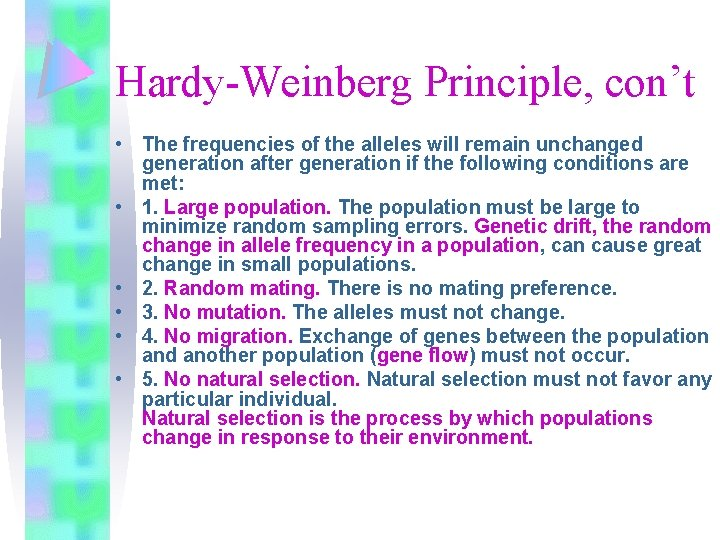 Hardy-Weinberg Principle, con't • The frequencies of the alleles will remain unchanged generation after