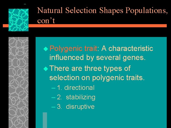 Natural Selection Shapes Populations, con't u Polygenic trait: A characteristic influenced by several genes.