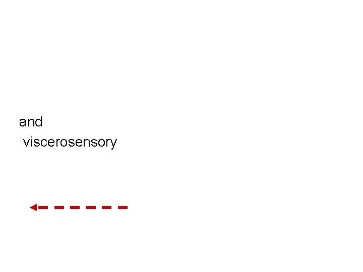 and viscerosensory