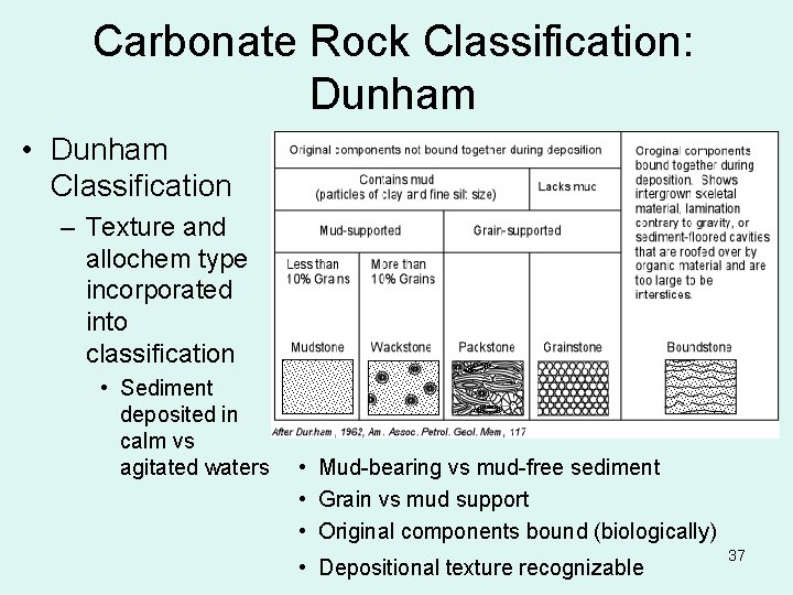 Carbonate Rock Classification: Dunham • Dunham Classification – Texture and allochem type incorporated into