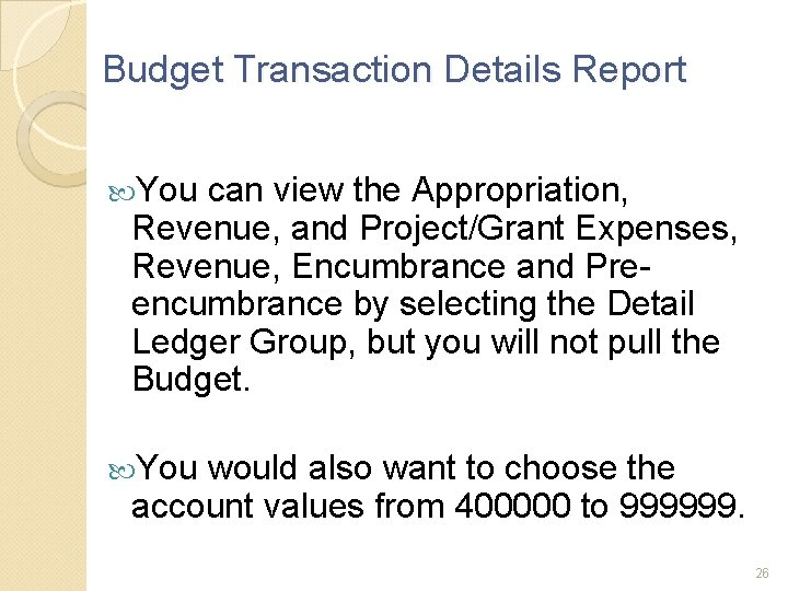 Budget Transaction Details Report You can view the Appropriation, Revenue, and Project/Grant Expenses, Revenue,