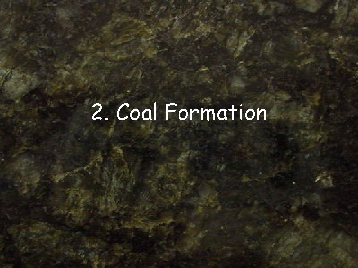 2. Coal Formation