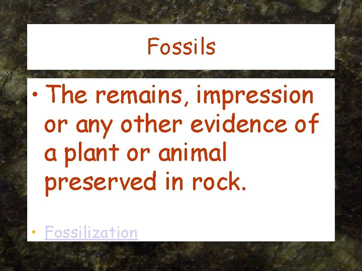 Fossils • The remains, impression or any other evidence of a plant or animal