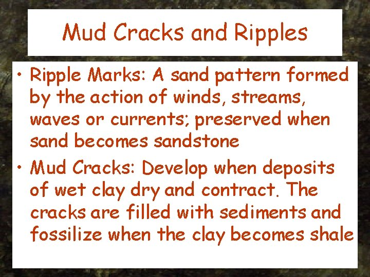 Mud Cracks and Ripples • Ripple Marks: A sand pattern formed by the action
