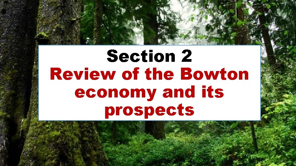 Section 2 Review of the Bowton economy and its prospects