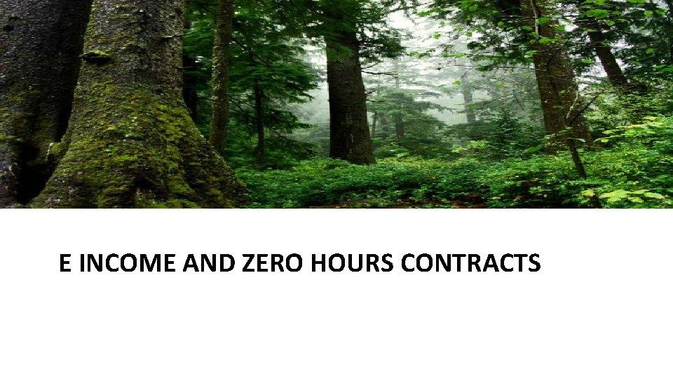 E INCOME AND ZERO HOURS CONTRACTS