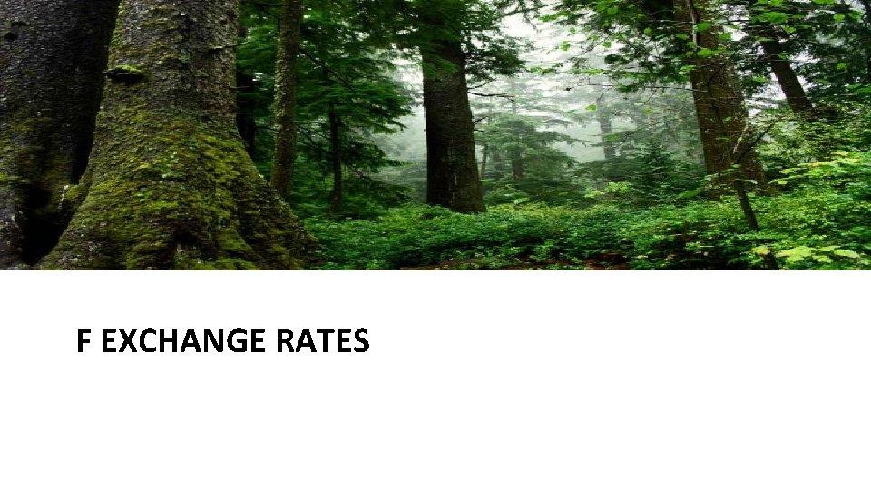 F EXCHANGE RATES