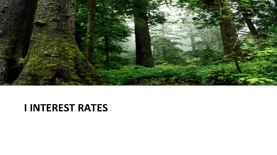 I INTEREST RATES