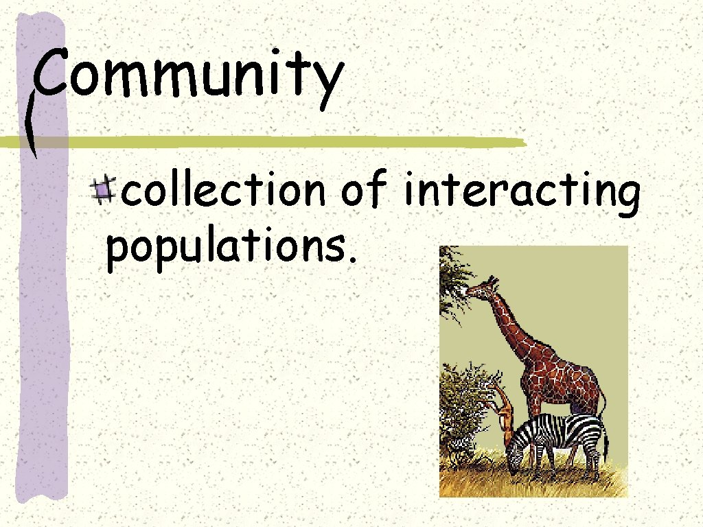 Community collection of interacting populations.