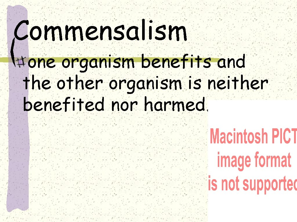 Commensalism one organism benefits and the other organism is neither benefited nor harmed.
