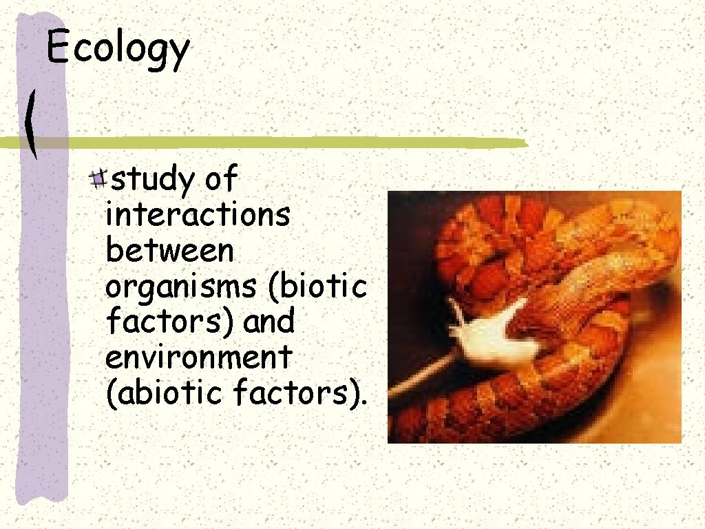 Ecology study of interactions between organisms (biotic factors) and environment (abiotic factors).