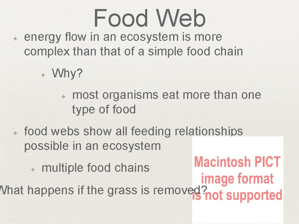 Food Web ✦ energy flow in an ecosystem is more complex than that of