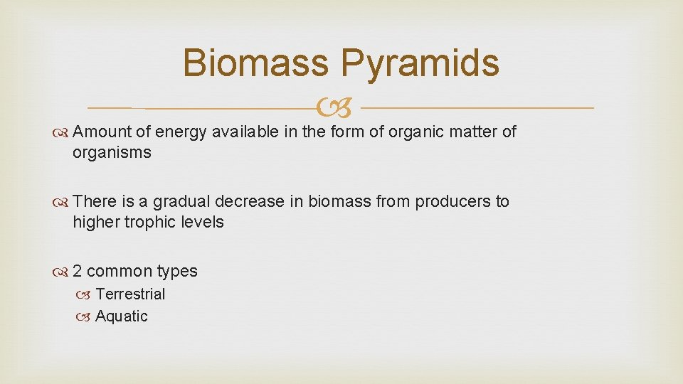 Biomass Pyramids Amount of energy available in the form of organic matter of organisms