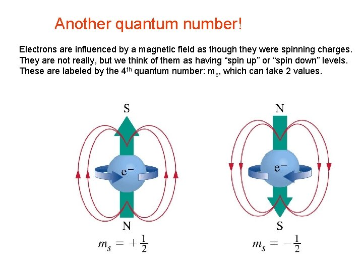 Another quantum number! Electrons are influenced by a magnetic field as though they were