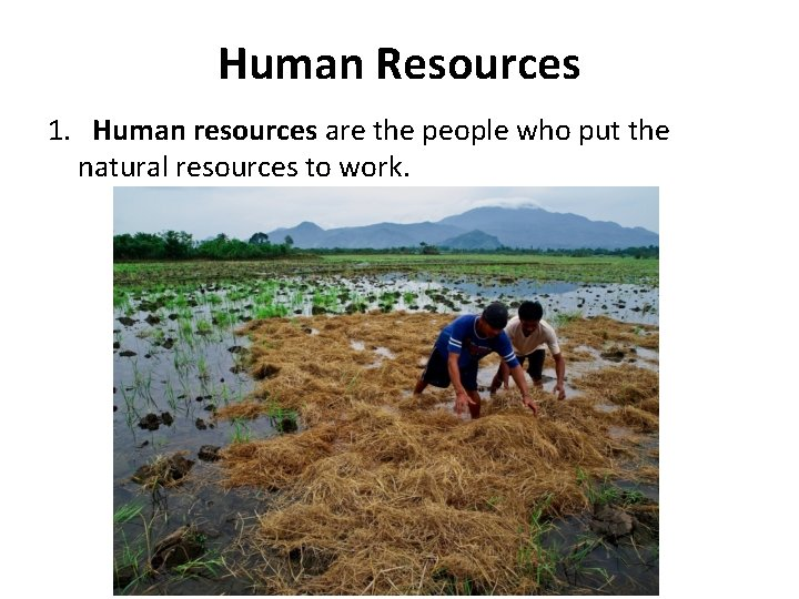 Human Resources 1. Human resources are the people who put the natural resources to