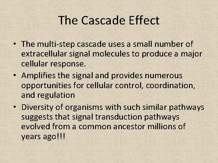The Cascade Effect • The multi-step cascade uses a small number of extracellular signal