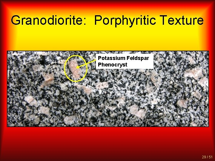 Granodiorite: Porphyritic Texture Potassium Feldspar Phenocryst 29 / 51