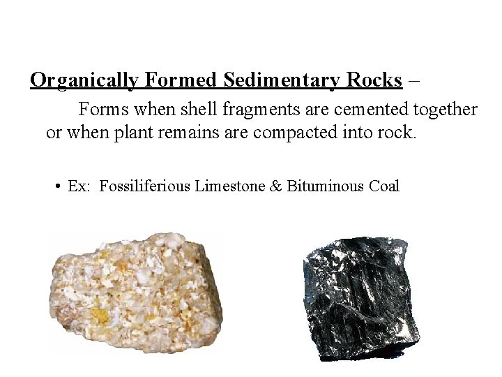 Organically Formed Sedimentary Rocks – Forms when shell fragments are cemented together or when