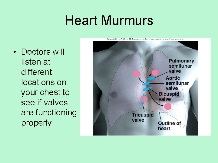 Heart Murmurs • Doctors will listen at different locations on your chest to see