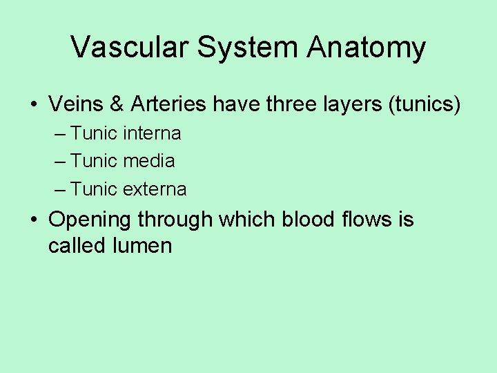 Vascular System Anatomy • Veins & Arteries have three layers (tunics) – Tunic interna